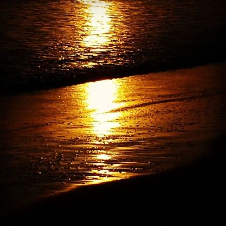 golden light on shore