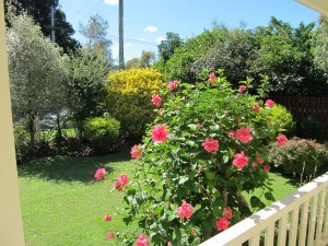 ms-garden